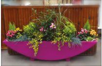Jardiniere muflier + reserve